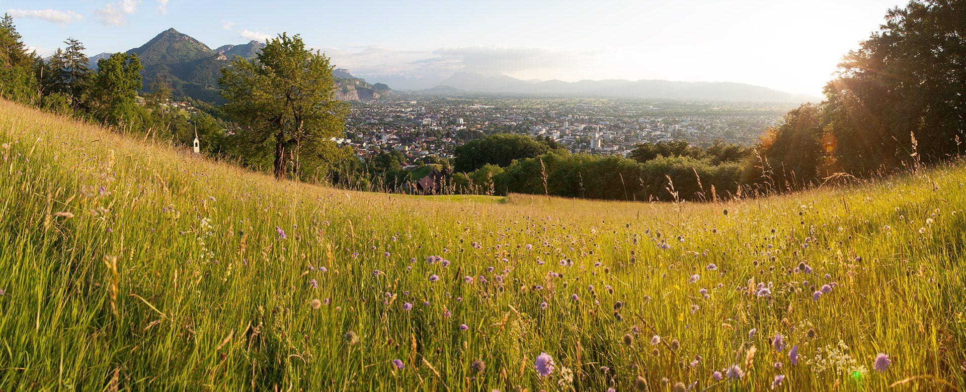 Sommer Vorarlberg VLV